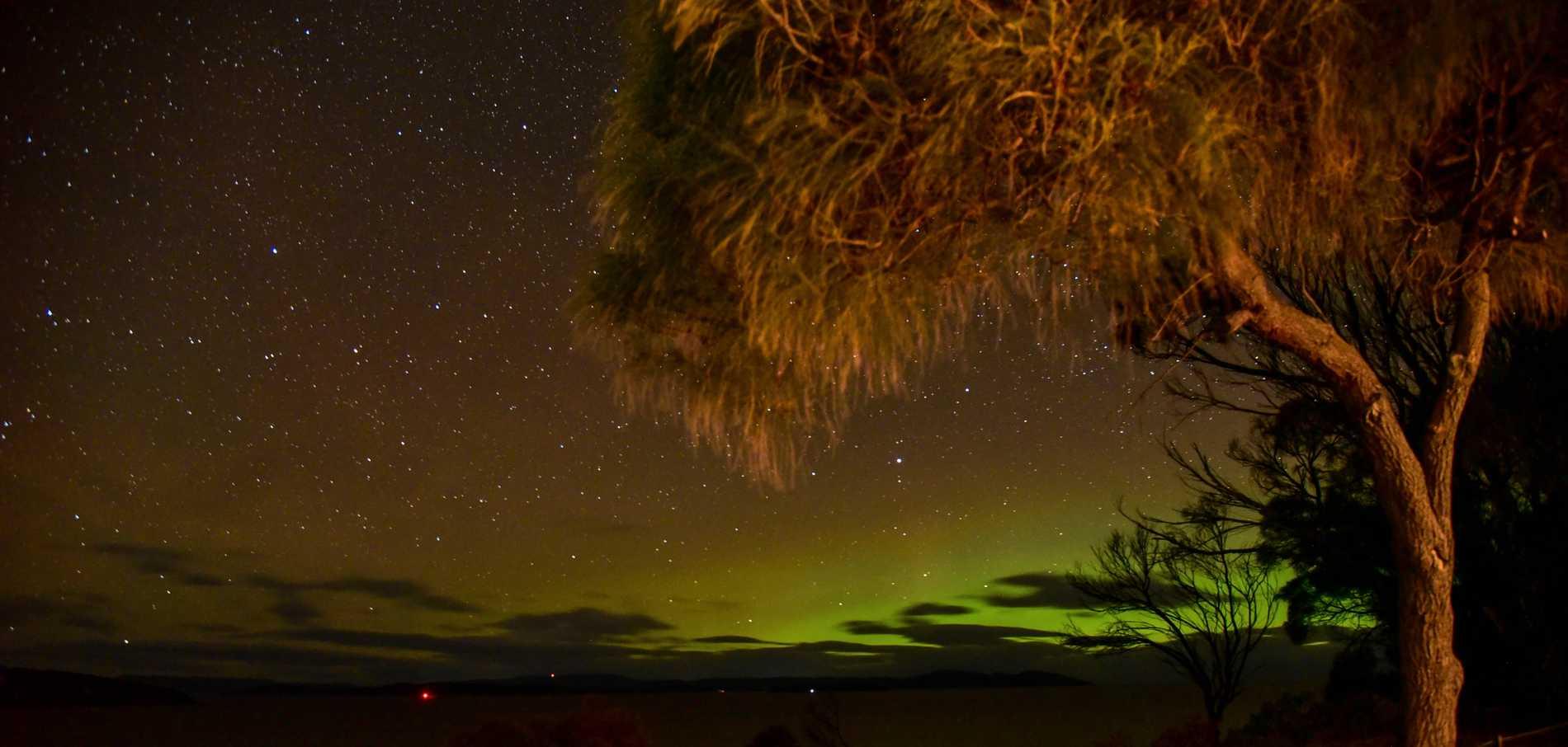 Även över Tasmanien syns sydskenet.