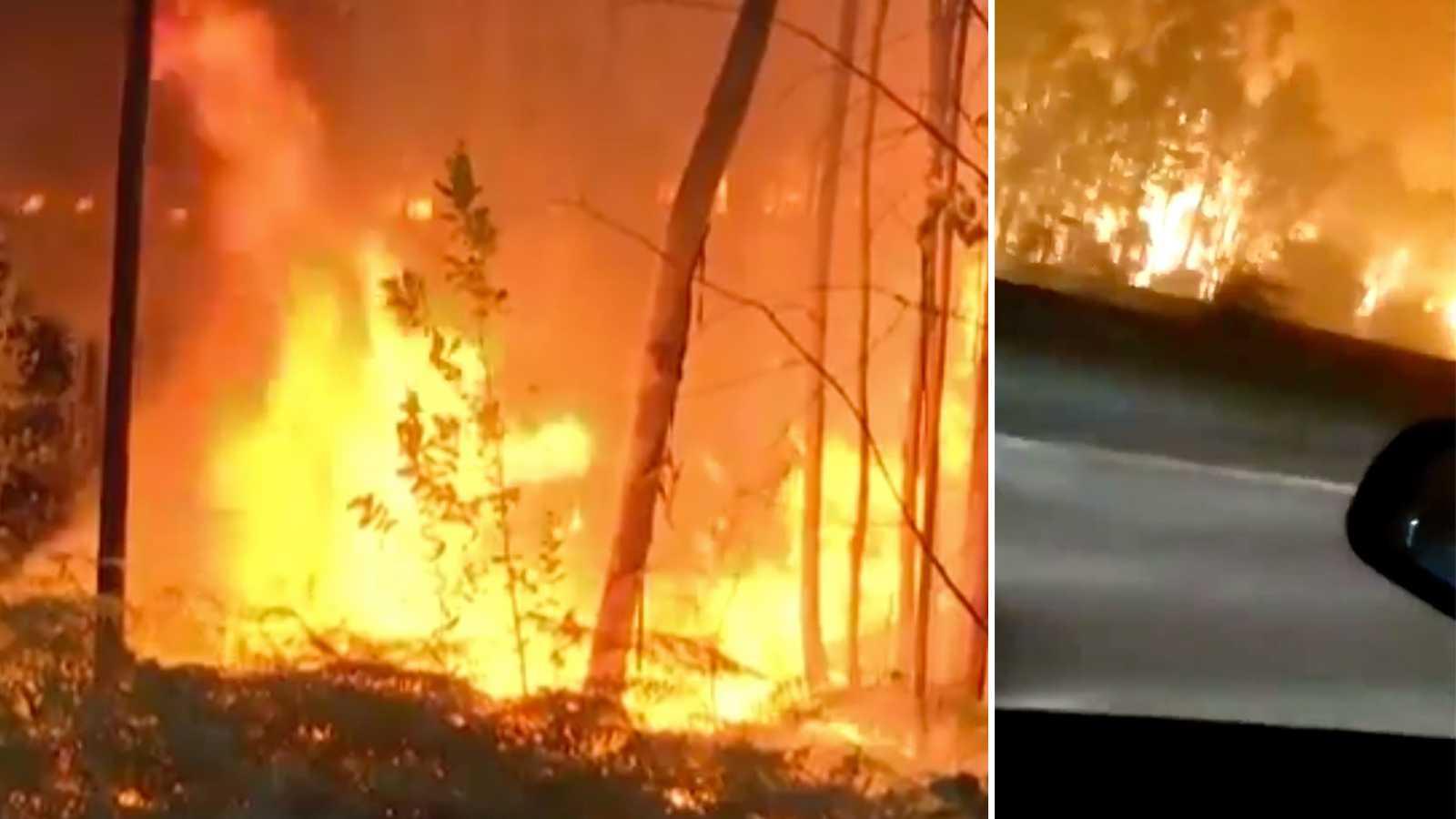 Skogsbränder härjar i Portugal – 1 000 brandmän inkallade