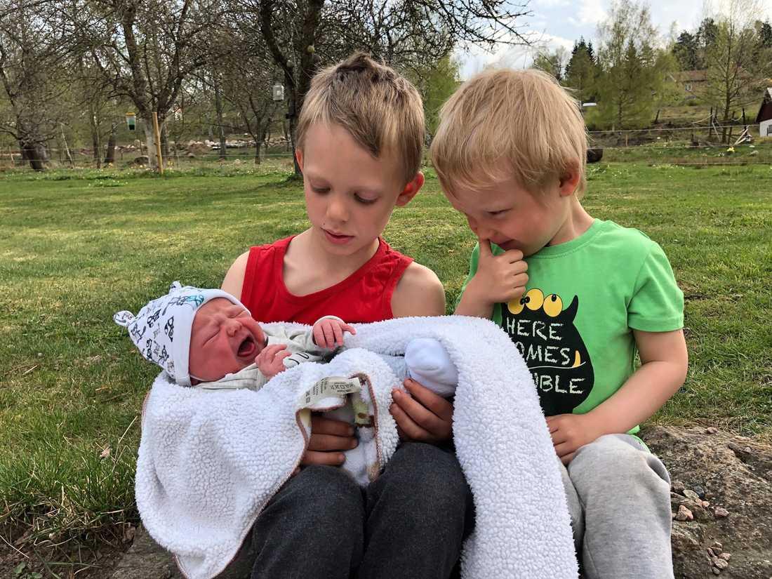 Lucas, 6, Liam, 3, och Tuva, snart en vecka gammal.