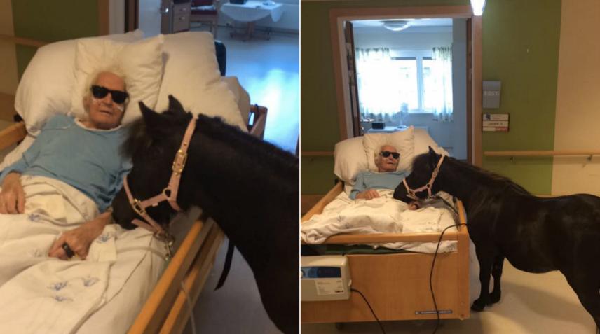89-årige Karl fick finbesök på vårdhemmet. Foto: Privat