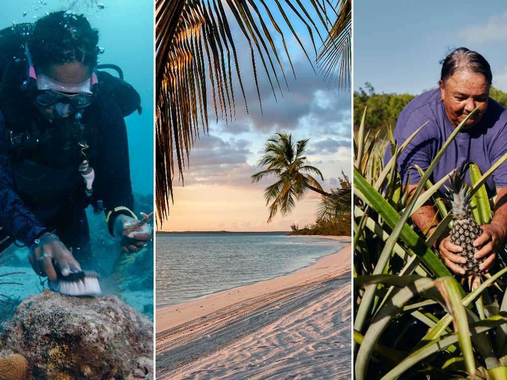 Sökes: Frivilliga att arbeta på Bahamas i två månader