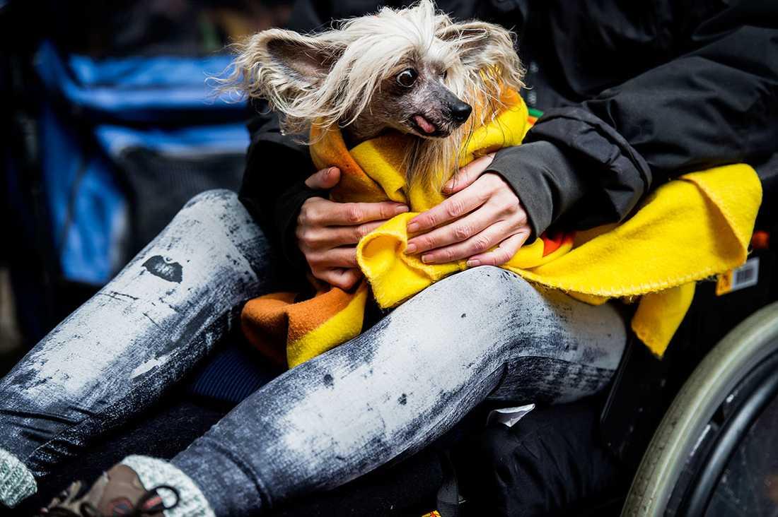 """""""Jag sitter instängde i mitt hus och kommer inte ut"""", säger Beate Blümel som har stort sällskap av sin hund Carl-Otto."""