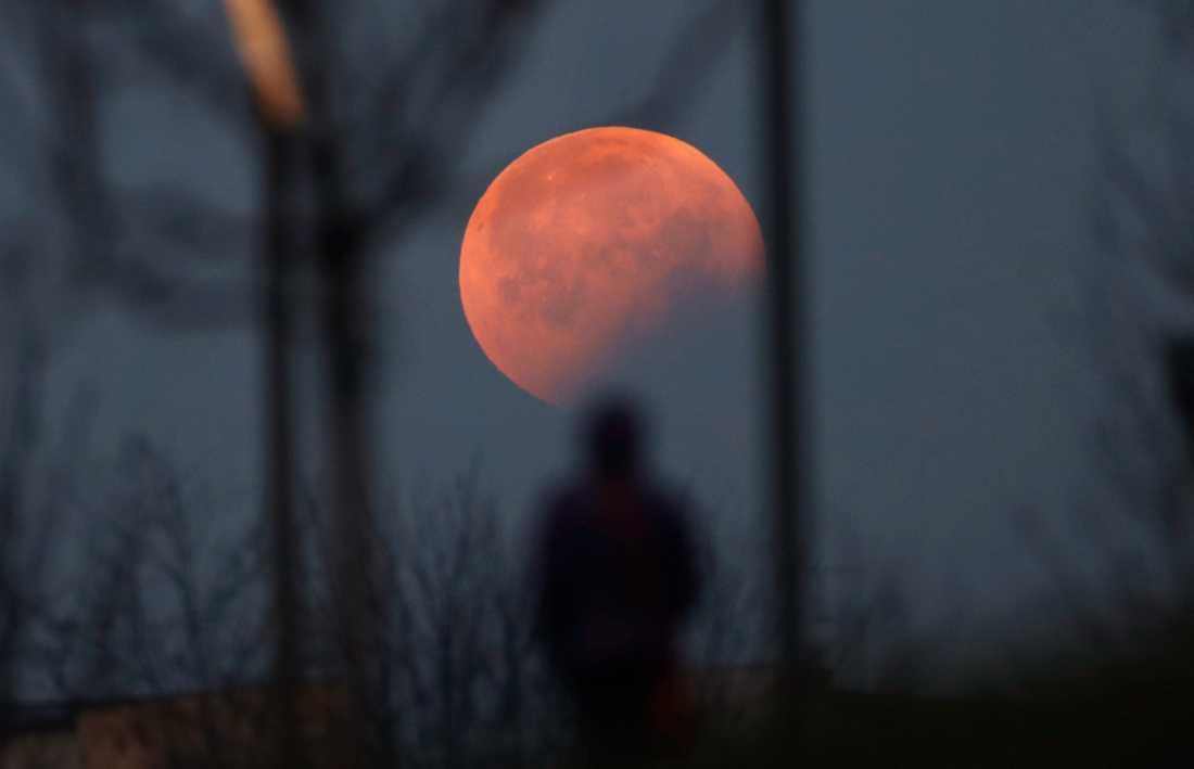 Månen kunde ses på många håll, som här i Milano i Italien.