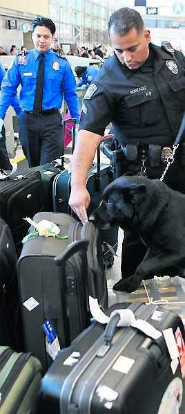 Säkerhetskontrollerna på amerikanska flygplatser har blivit allt hårdare efter 2001.