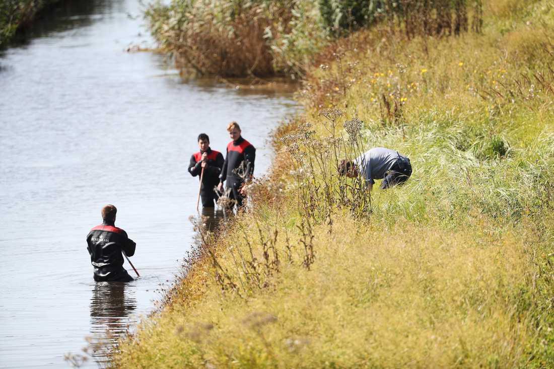 Sökandet fortsatte i området där Kim Walls kvarlevor hittades.