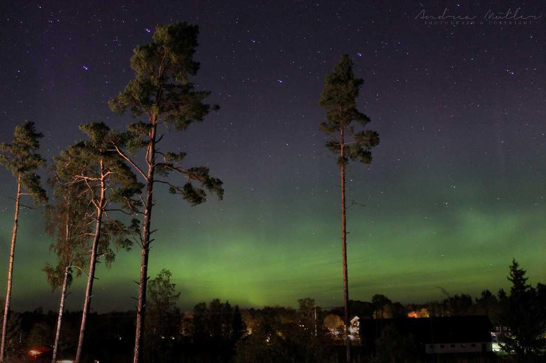 Den här bilden fotade Andrea Müller i Åkersberga under kvällen.