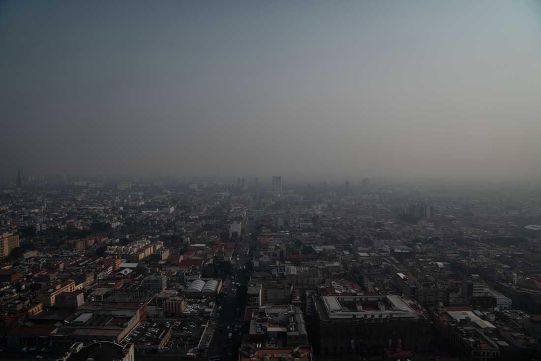 20-miljonersstaden täcks av tät smog.