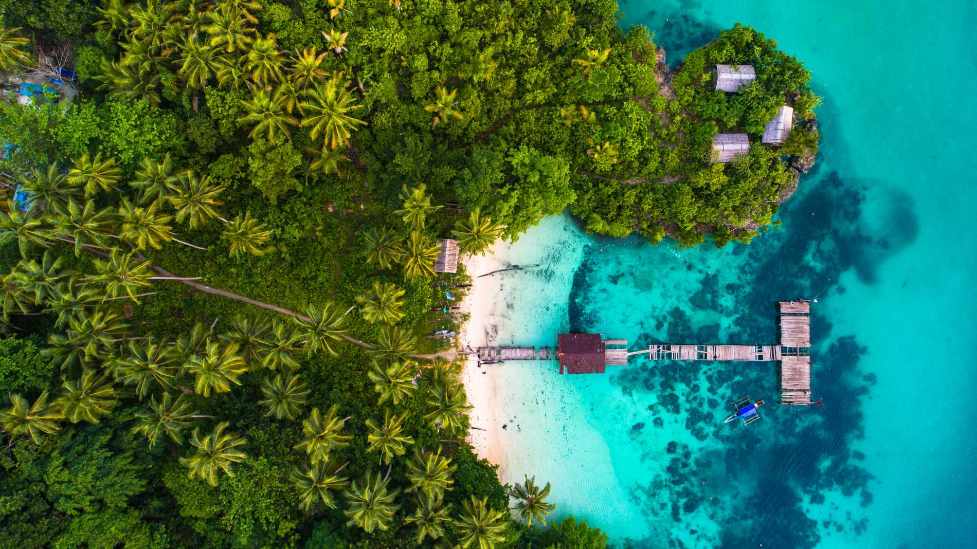 Raja Ampatöarna är kända för sina artrika korallrev.