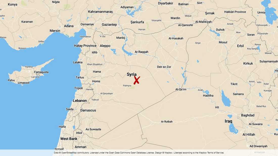 Mer är 50 dödsoffer har krävts under strider mellan IS-kopplade jihadister och regeringsstyrkor i Homsprovinsen i Syrien, enligt det oppositionella Syriska människorättsobservatoriet (SOHR) som bevakar kriget från Storbritannien.