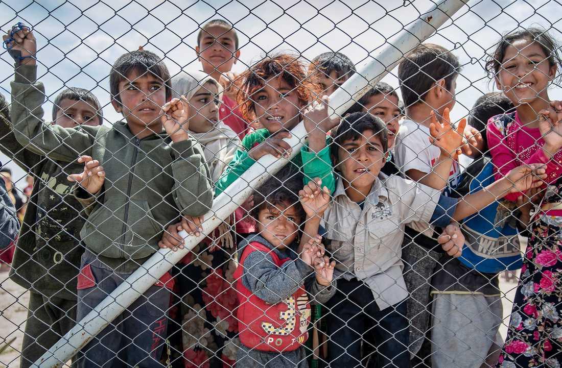 Lägret al-Hol i Syrien med tusentals besegrade IS-anhängare riskerar att hamna i en stridszon.