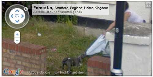 Kvinna vs. hund. Dragkamp fångad på bild av Googlekameran.