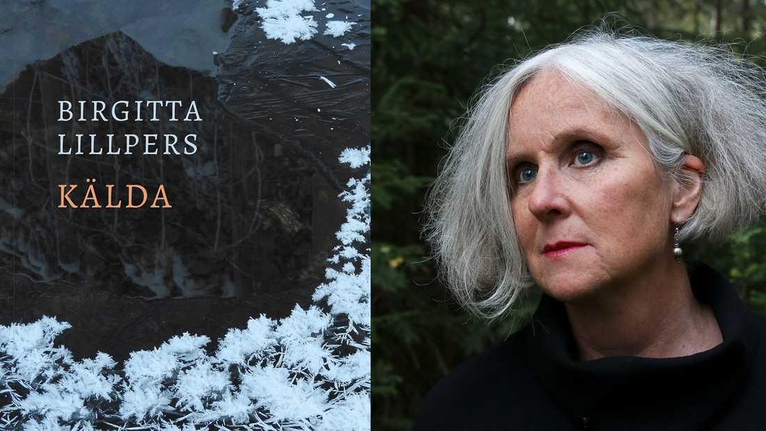 Birgitta Lillpers är bosatt i Orsa på en släktgård med får och har sedan debuten 1982 givit ut ett 20-tal titlar: poesi, prosa och kulturhistoria.