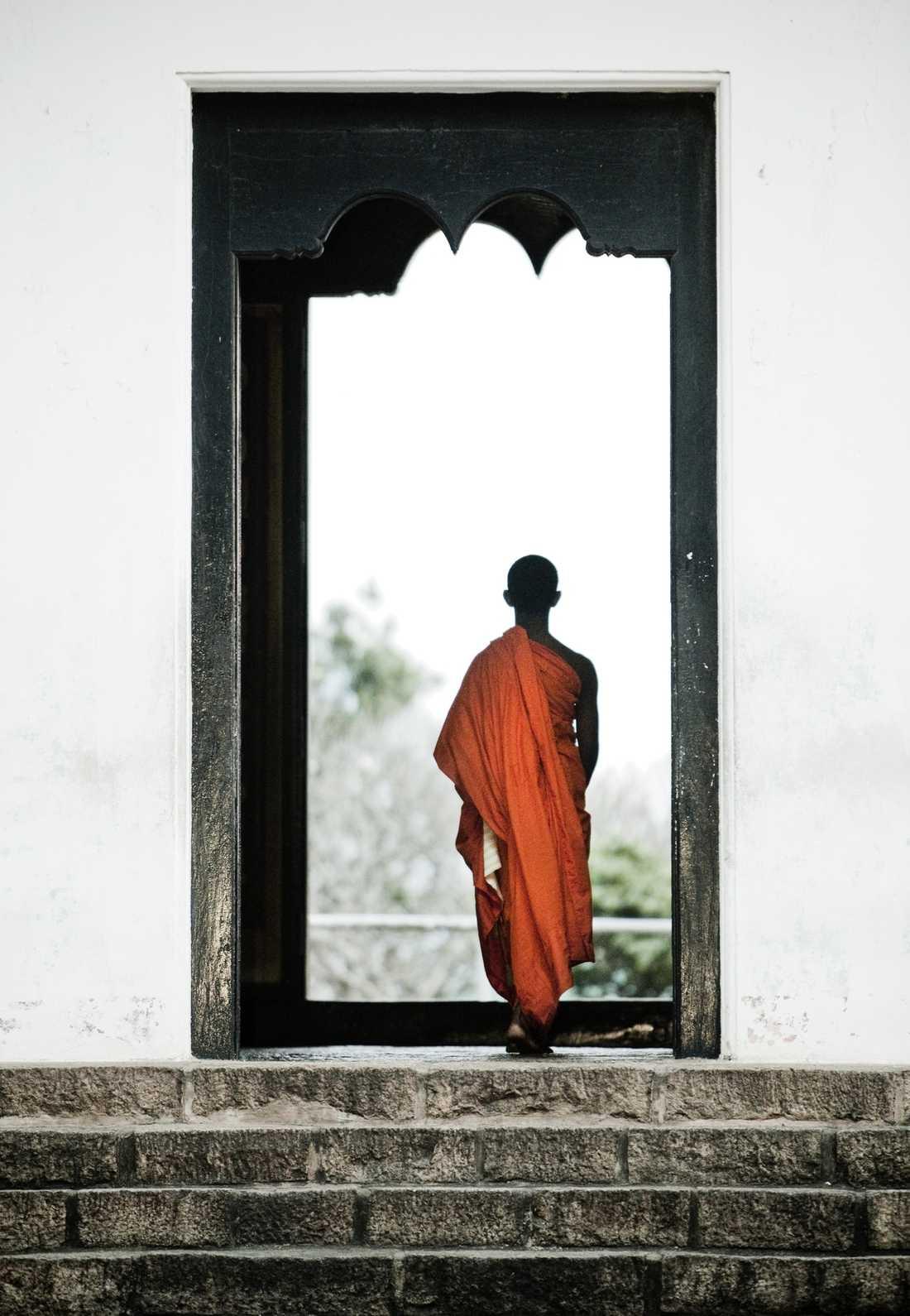 Grottemplet i Dambulla är ett av världens märkligaste. Innanför entréerna till grott-rummen finns flera gigantiska liggande Buddhastatyer. Hur de kommit dit är en gåta, hur vi ens orkade upp för alla trappor – utan packning – är en historia i sig?