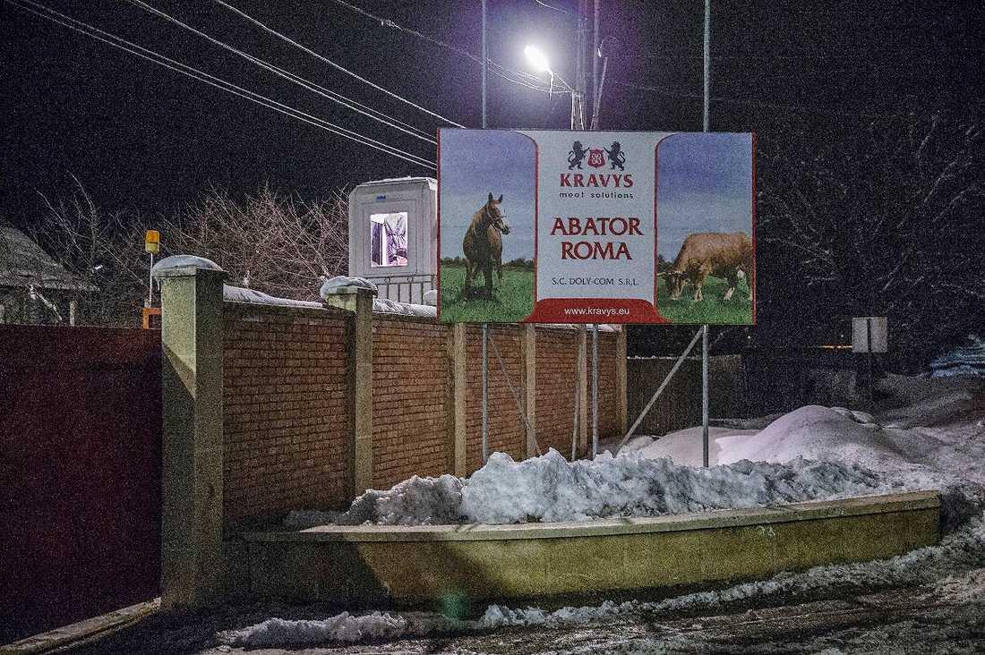 """SKICKAR KÖTT TILL CYPERNHästkött från slakteriet Kravys meat solutions i Roma i norra Rumänien hamnar i färdig lasagne i Sverige. Men här vet ingen vad som händer med köttet. Slakteriet exporterar mest till Cypern och enligt dem själva och Rumäniens premiärminister Victor Ponta är köttet märkt just med """"häst"""" när det skickas iväg."""