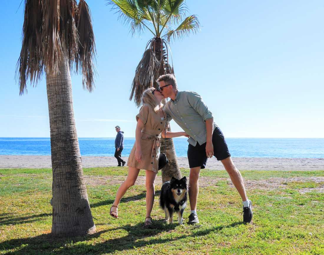 Hanna och Erik Stengård reser med hunden Sonja på obestämd tid.