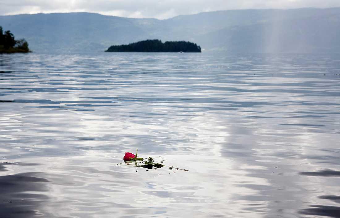 2011 var han på Arbeiderpartiets ungdomsförbunds sommarläger på Utøya.