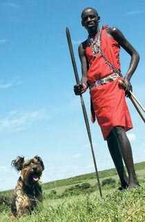 Oscar i Kenya.