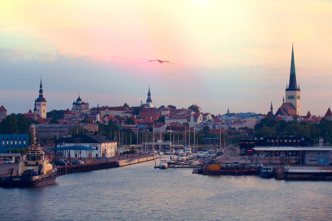 Tallinns skyline.