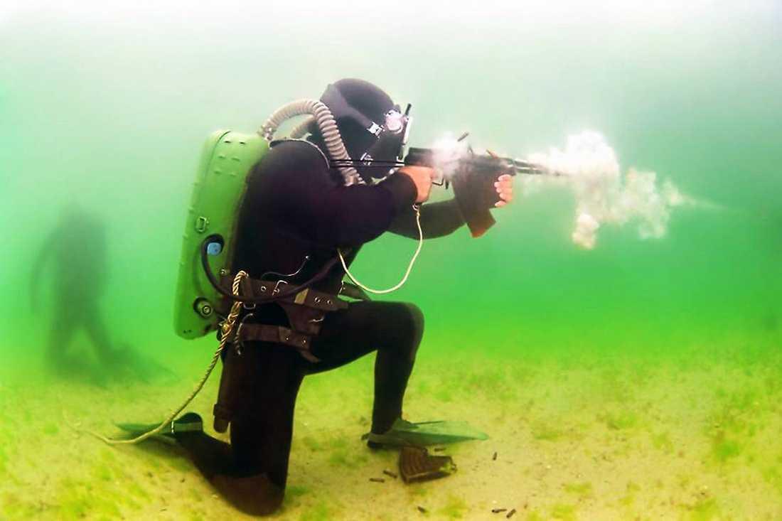 Om det är ryska styrkor som gjort intrång på svenskt vatten är det med största sannolikhet marina spetsnazförband, enligt Rysslandsexperten Vera Efron som skrivit en bok om de specialiserade undervattenssoldaterna.
