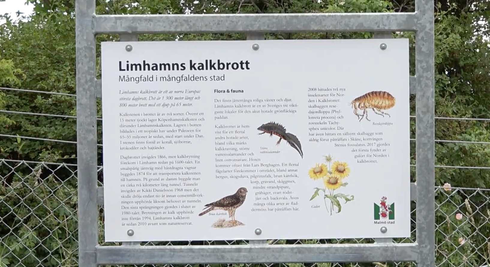 Skylten som dök upp vid Limhamns kalkbrott.
