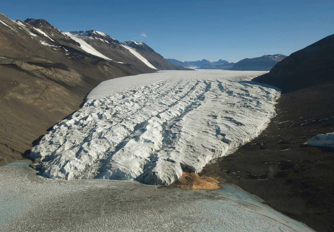 Många glaciärer smälter på Antarktis.