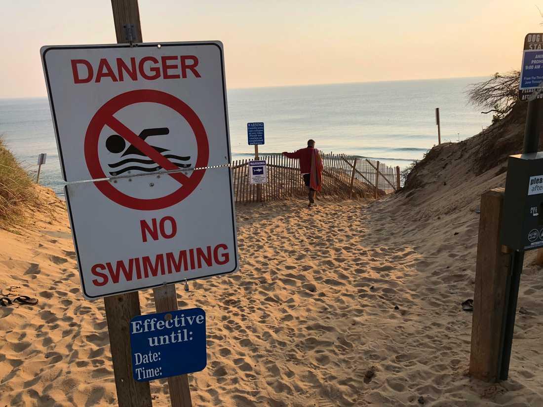 En strand i Cape Cod stängdes förra månaden efter en annan hajattack.