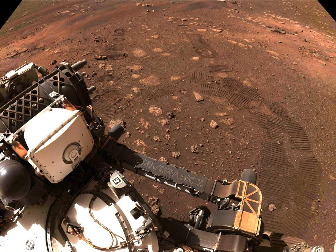 Perseverance fotograferar sina egna hjulspår under den första korta turen på Mars.
