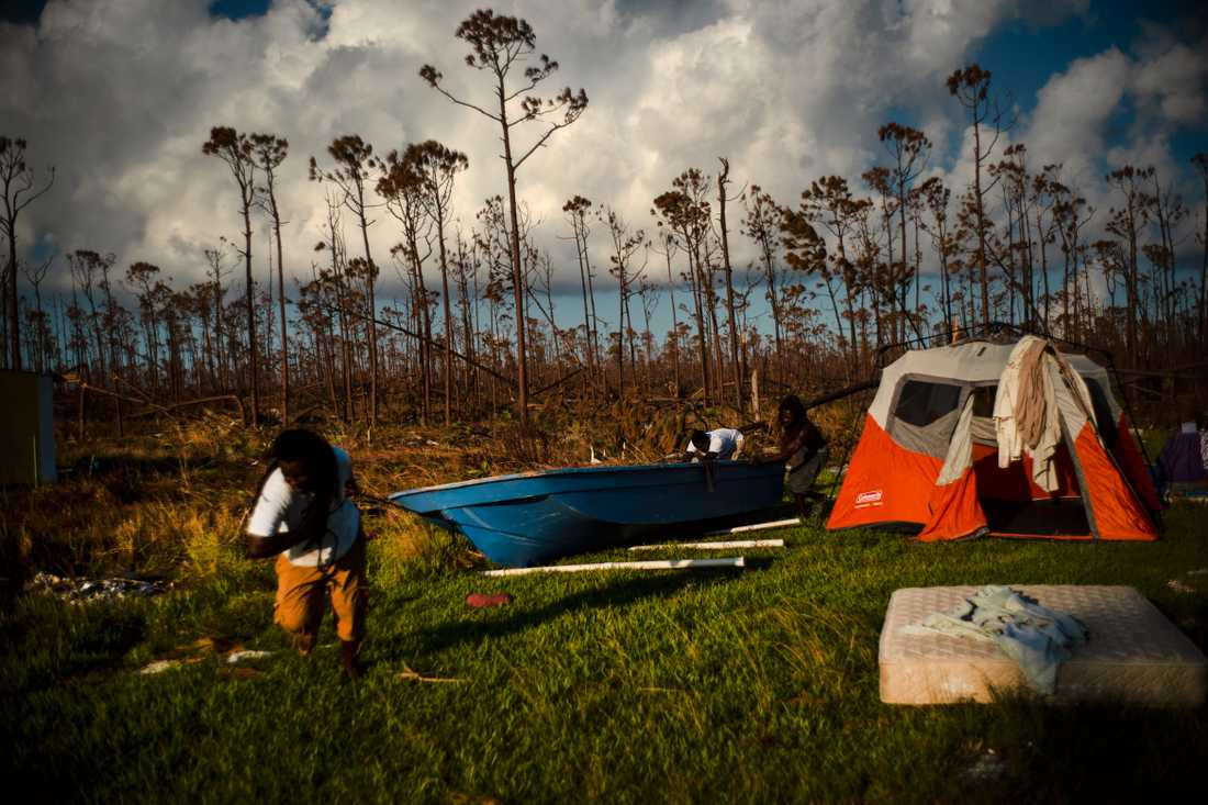 Tre män röjer på sina orkanhärjade ägor på ön Grand Bahama, där de slagit upp ett tält för att få sovplats för natten.
