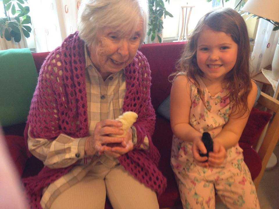 Här får de äldre fira påsk med kycklingar. Här sitter Ingrid Segerhorn, 97, och Karolinas sexåriga dotter och myser med de små kycklingarna.