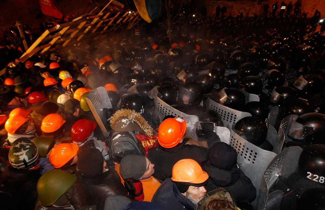 Demonstranter och kravallpolis.