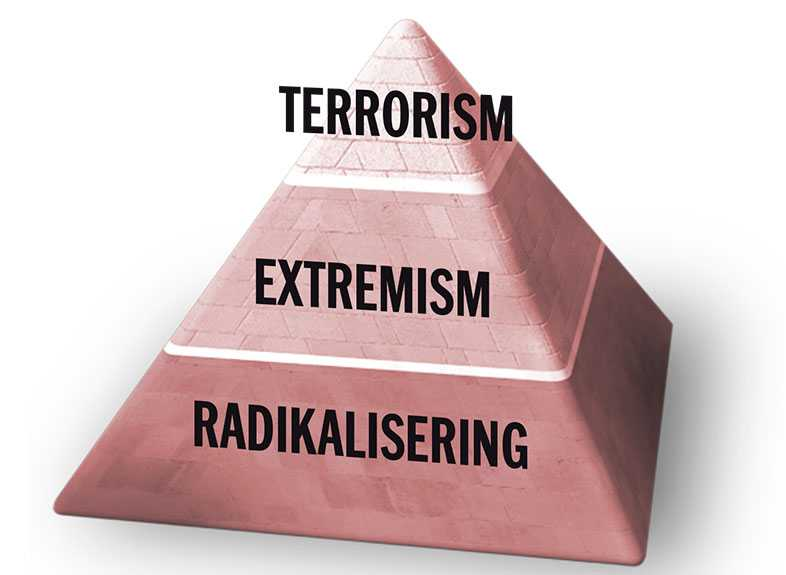 Utvecklingen mot terrorism sker stegvis.