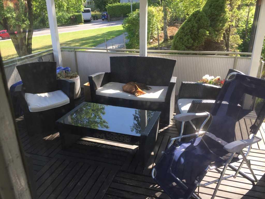 """Här ligger räven ihoprullad i solen och sover på Anttis veranda: """"Han är jättefin""""."""