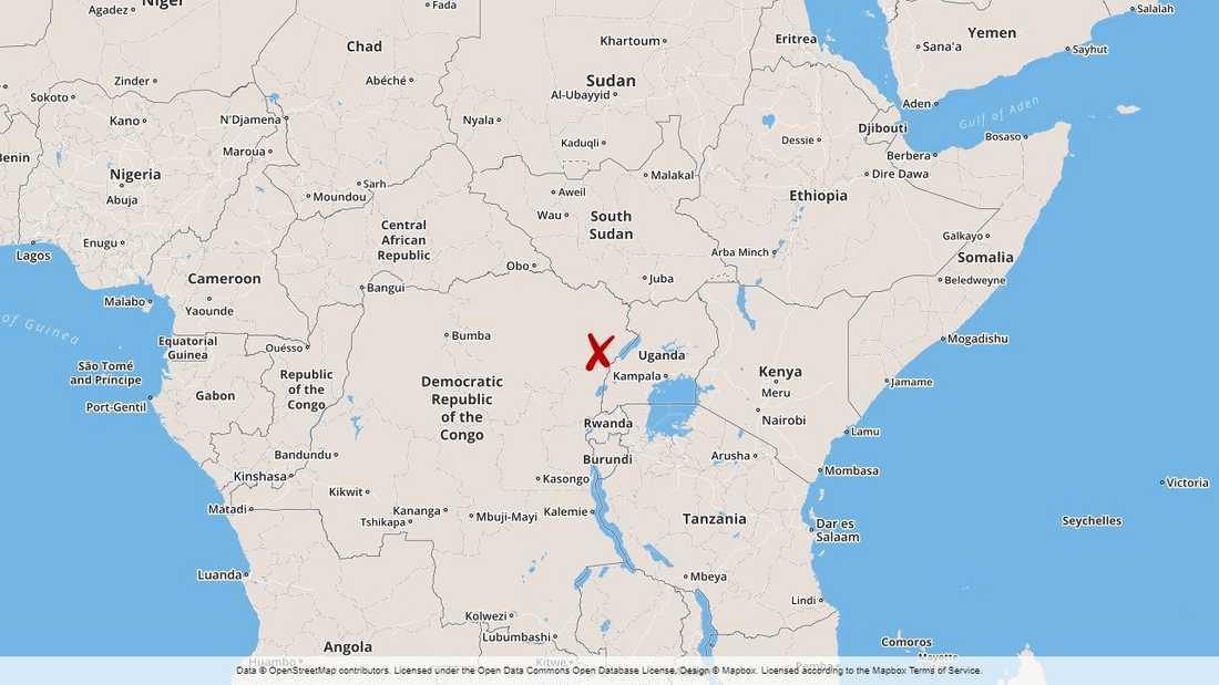 Våldet i den oroliga regionen Ituri i Kongo-Kinshasa kan vara brott mot mänskligheten, enligt FN:s människorättskontor.