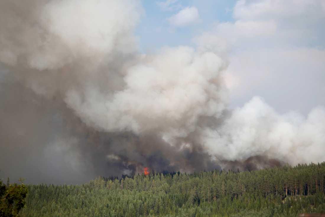 Brand i Hammarstrand i Ragunda kommun under måndagen. Arkivbild.