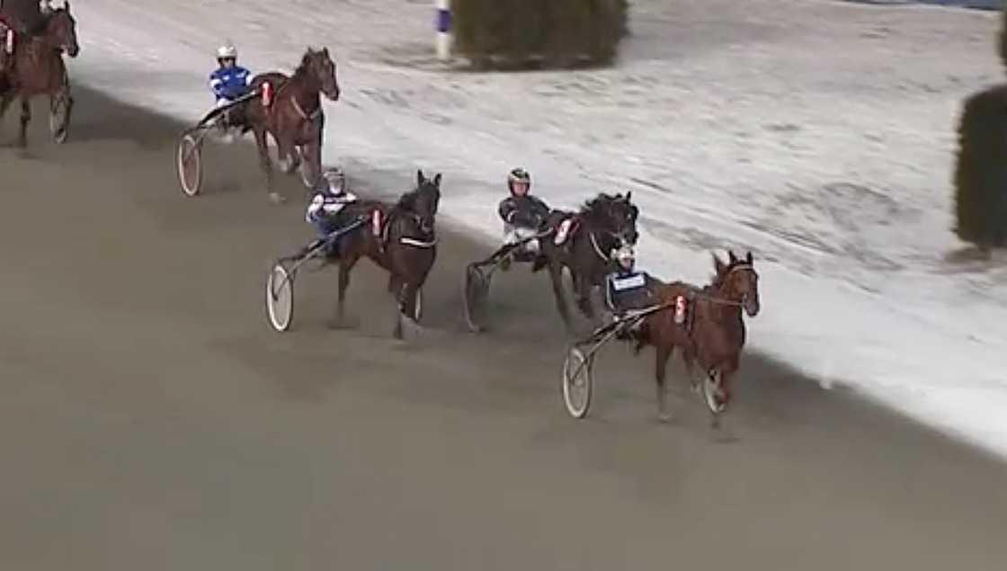 Frenchnorwegian ID vid segern på Solvalla med tränaren och kusken Robert Bergh.