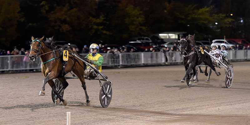 Björn Goop och Face Time Bourbon vid segern i Europaderbyt på Vermo. Nu är det klart att den svenske stjärnkusken kör topphästen under franska vintermeetinget.
