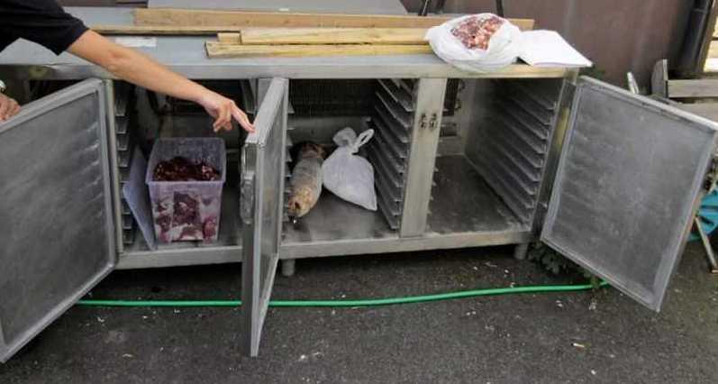 Hittade 25 kilo svartslaktat kött i restaurangens kyl.