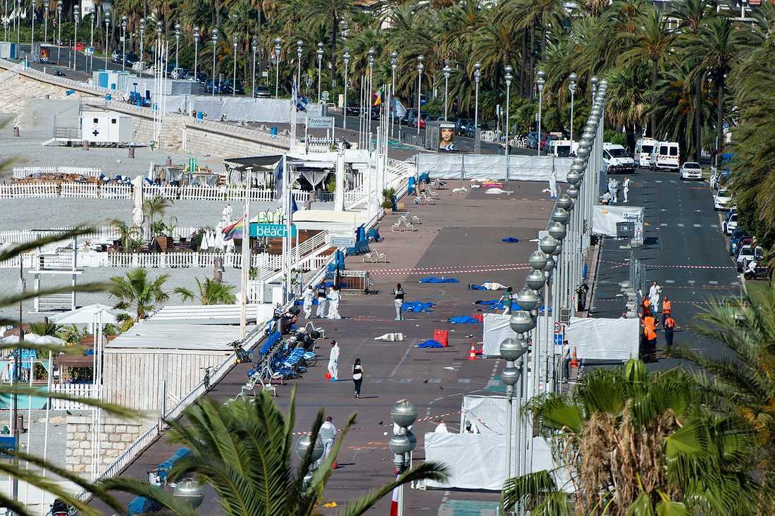 Polisen går runt inne på det avspärrade området dagen efter terrordådet på Promenade des Anglais, i Nice.