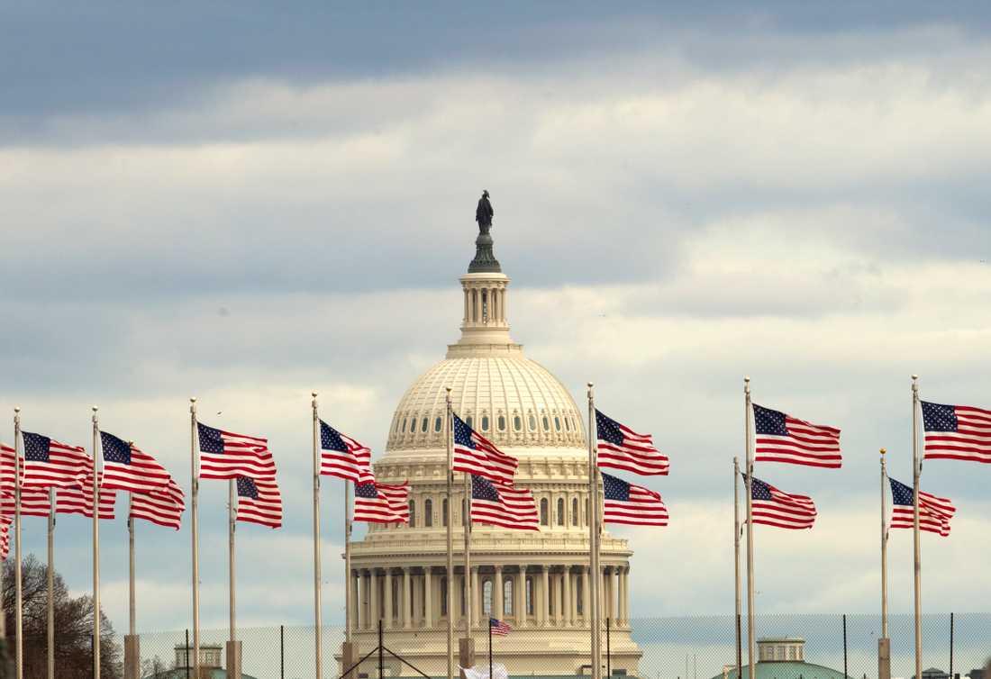 Flaggor framför Capitolium i Washington DC där den amerikanska kongressen har sitt säte. Den 116:e kongressen pågår mellan den 3 januari 2019 och den 3 januari 2021
