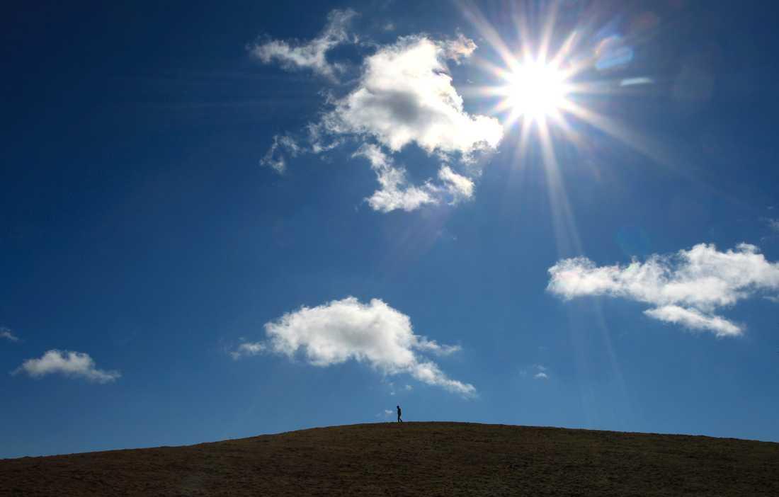 Den varma sommaren är härlig för många, men det finns också många baksidor av den stekande solen och höga temperaturen.