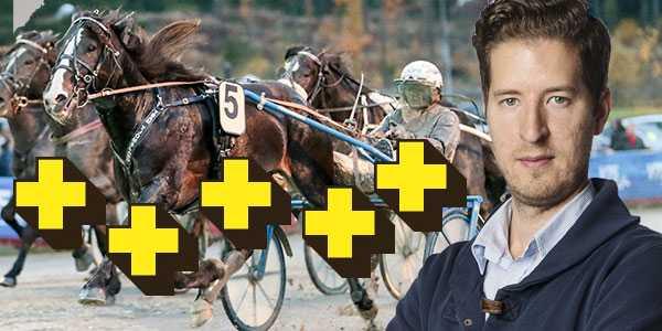 Trav365:s expert Erik Pettersson sätter plus på V75-omgången