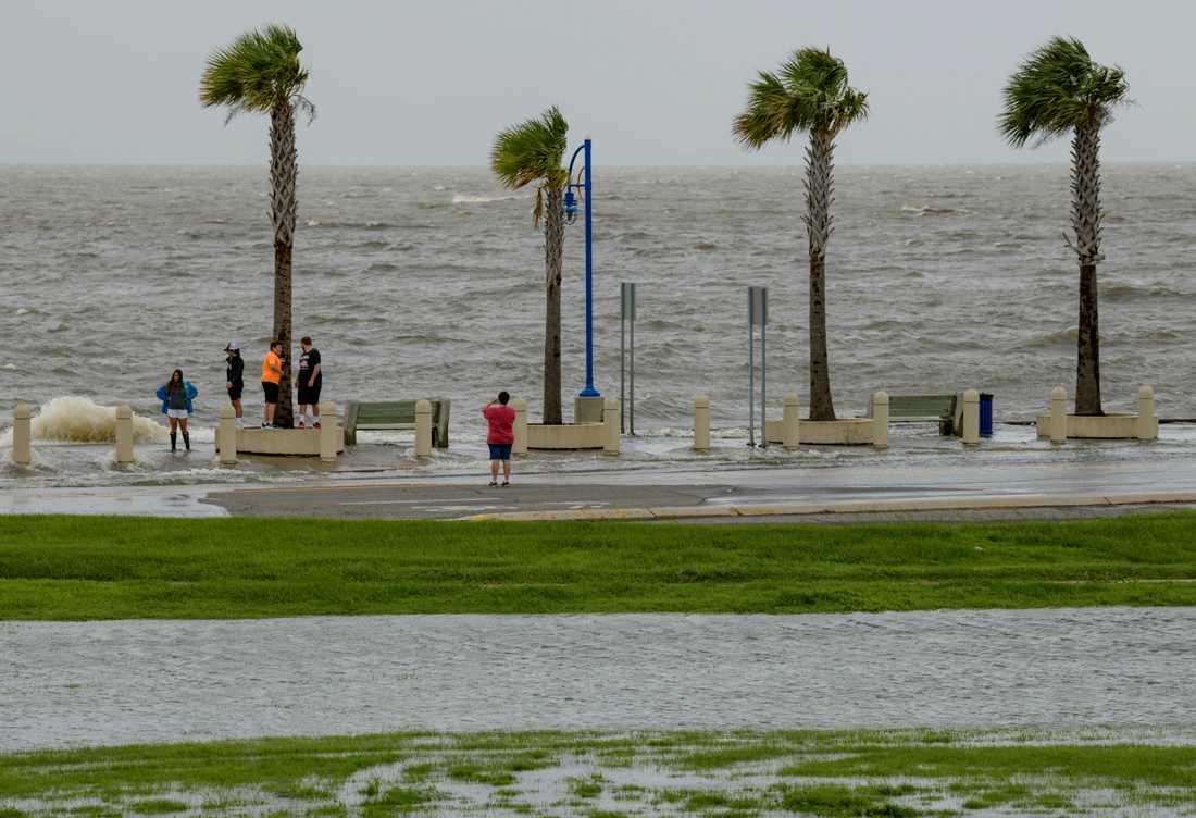 Invånarna i Louisiana spanar efter ovädret Barry.