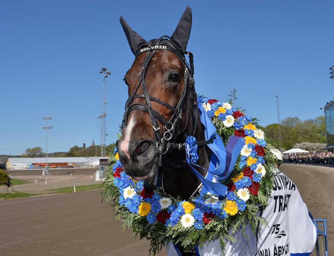 Solvato vann finalen av Olympiatravet för tre år sedan. På lördag startar hästen i V75-4, uttagningsloppet till årets final.