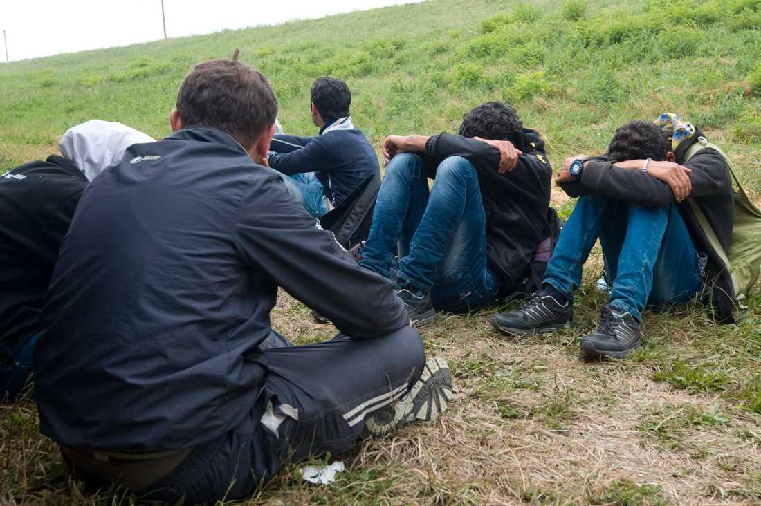 Flyktingar nära staden Szeged i Ungern, ungefär 17 mil från huvudstaden Budapest.