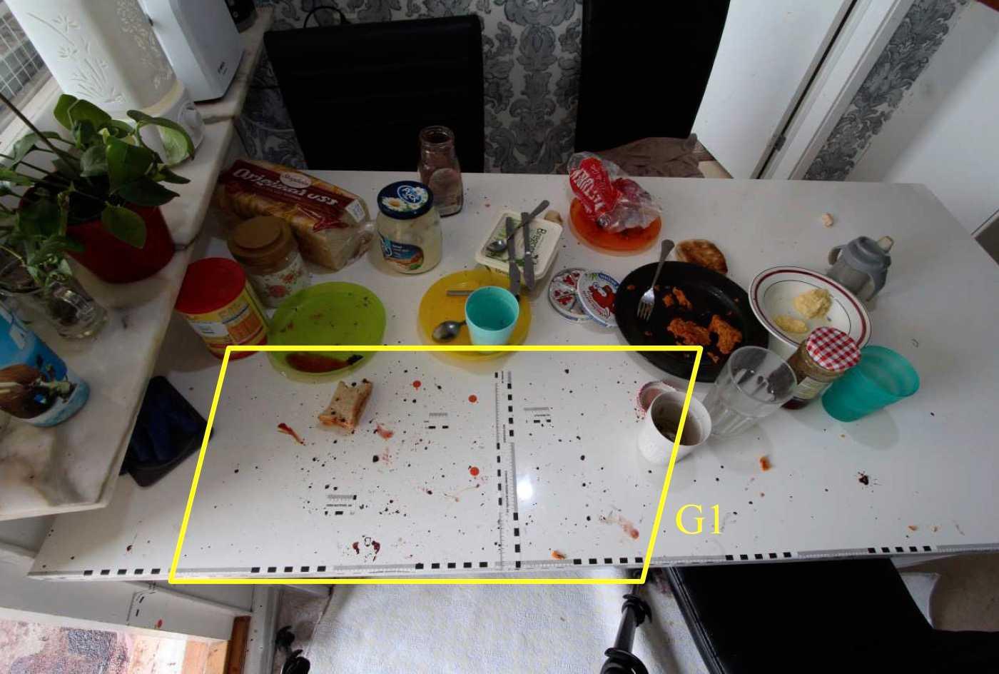 Familjen hade precis ätit frukost när mannen attackerade kvinnan.