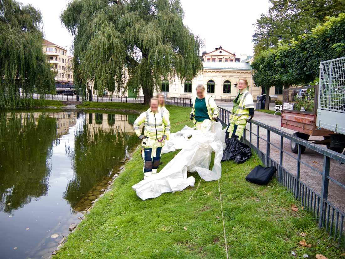 Parkarbetarna var mycket ångerfulla och erbjöd sig att hjälpa till att återställa verket.