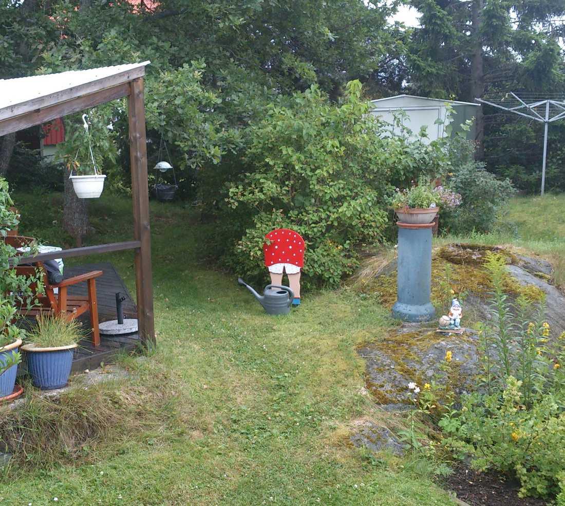 Trädgårdsarbete i regnet