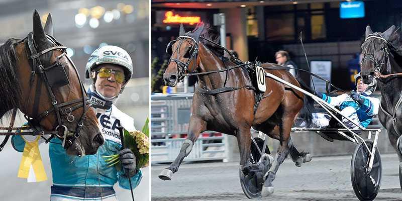 Sportbladets expert spikar Alaska Kronos och Örjan Kihlström i V64–1 i kväll. Här nedan hittar du tips till kvällens lopp.