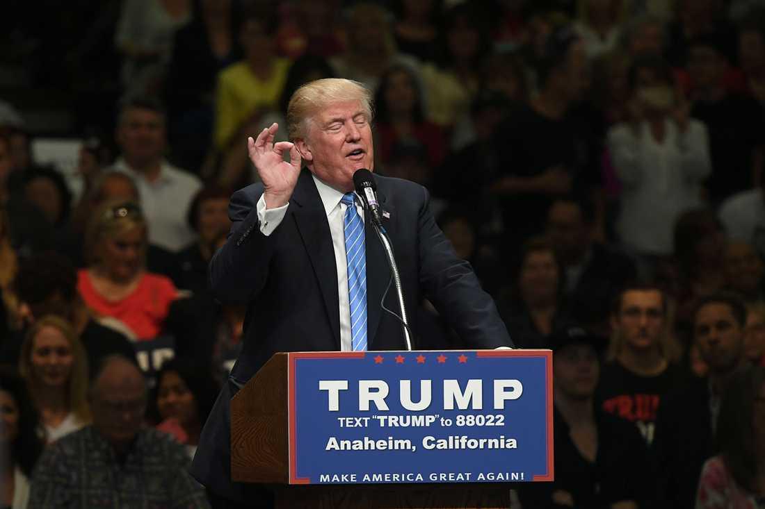 SD-väljare tror att Donald Trump blir USA:s nästa president.