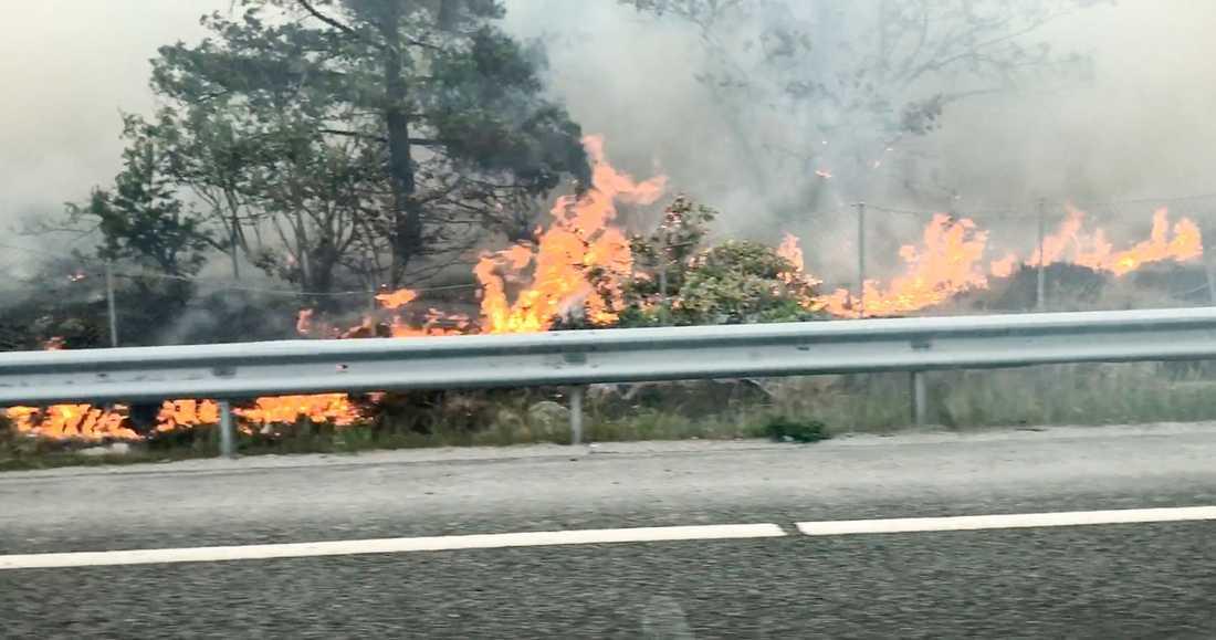 Kraftiga bränder i Sverige i somras, till följd av värmeböljan.